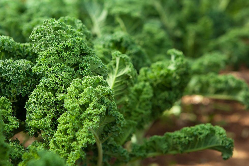 Energy Salad for Thyroid