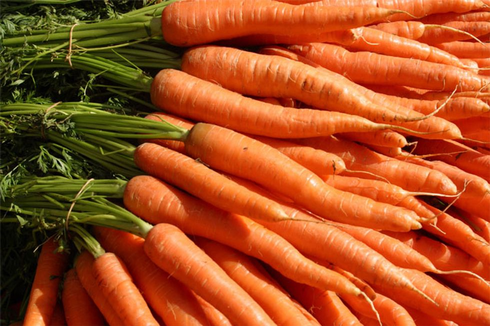 Root Vegetable Au Gratin