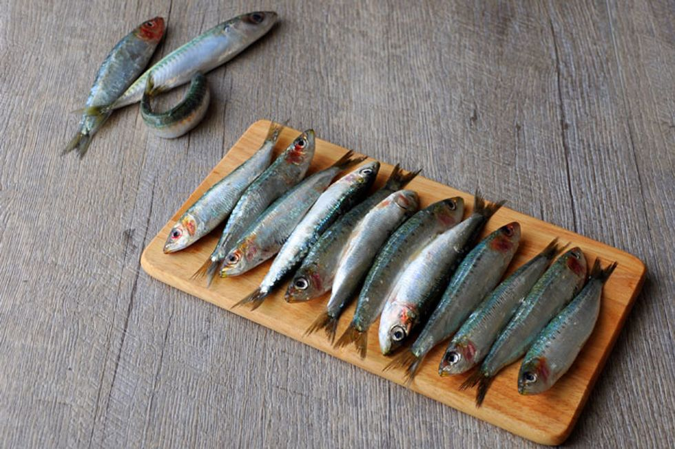 Bait to Plate: Avoid the Fishy Business of Seafood Fraud