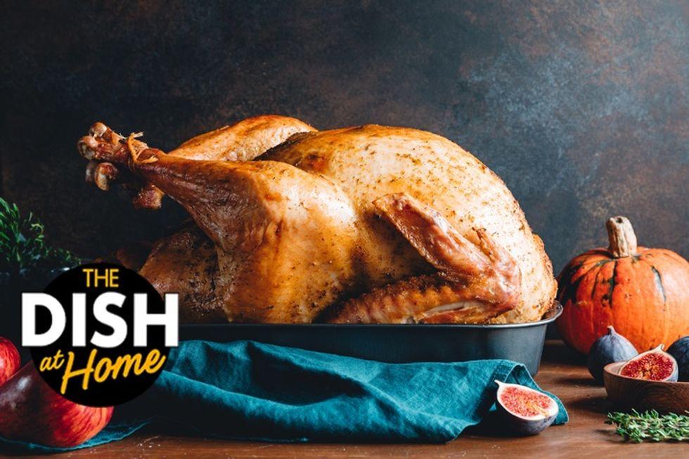 Photo of a turkey.