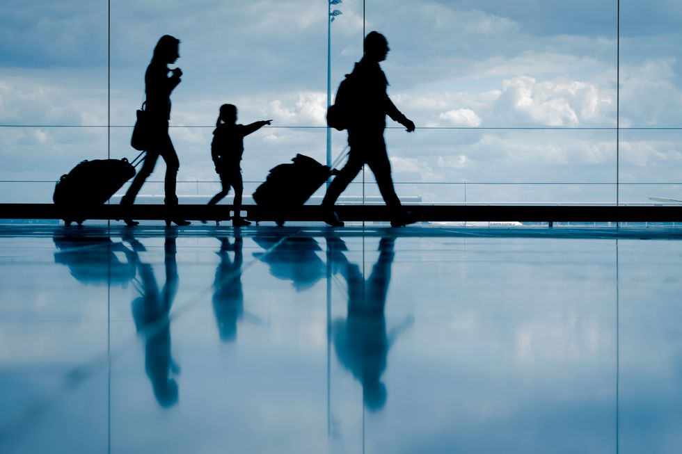 The Holiday Travel Survival Guide