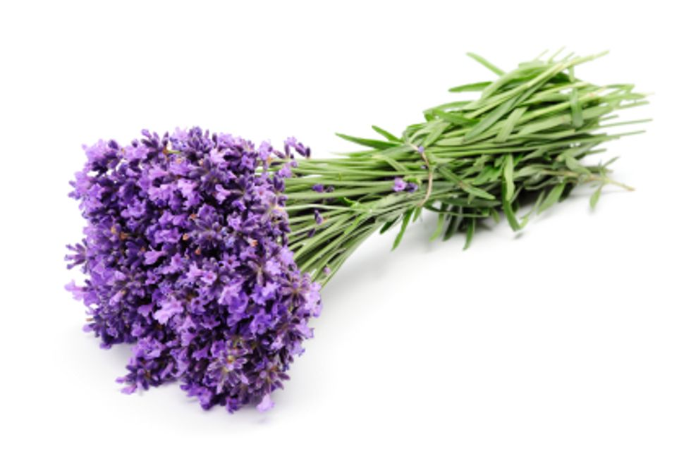 The Power of Flowers for Your Skin