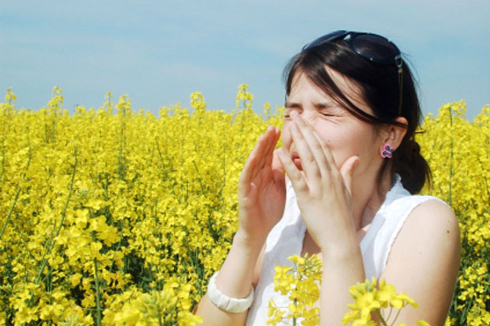 The Most Challenging Places to Live With Spring Allergies