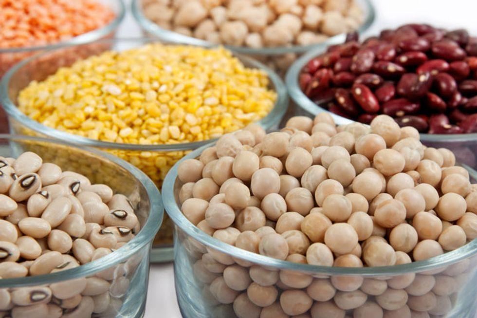 Food Allergy Symptom Checker