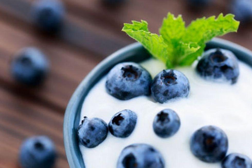 Fact Sheet: Probiotics