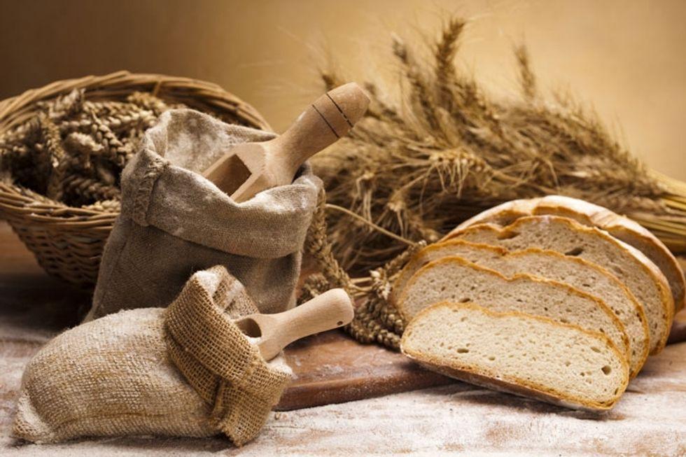 The Gluten Symptom Tracker