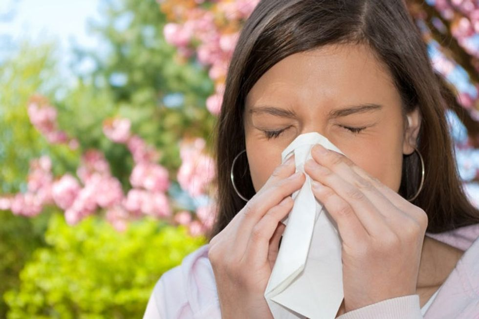 The Sinus Solution Fact Sheet