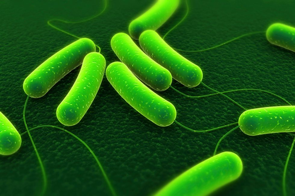 Health News: The Fight Against Superbugs