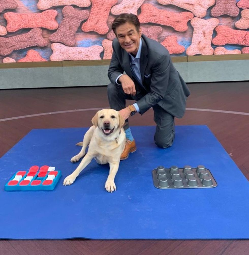 Dr. Oz and his dog, a yellow lab named Khaleesi