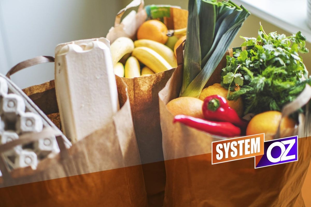Your System Oz Complete Shopping List for Better Health
