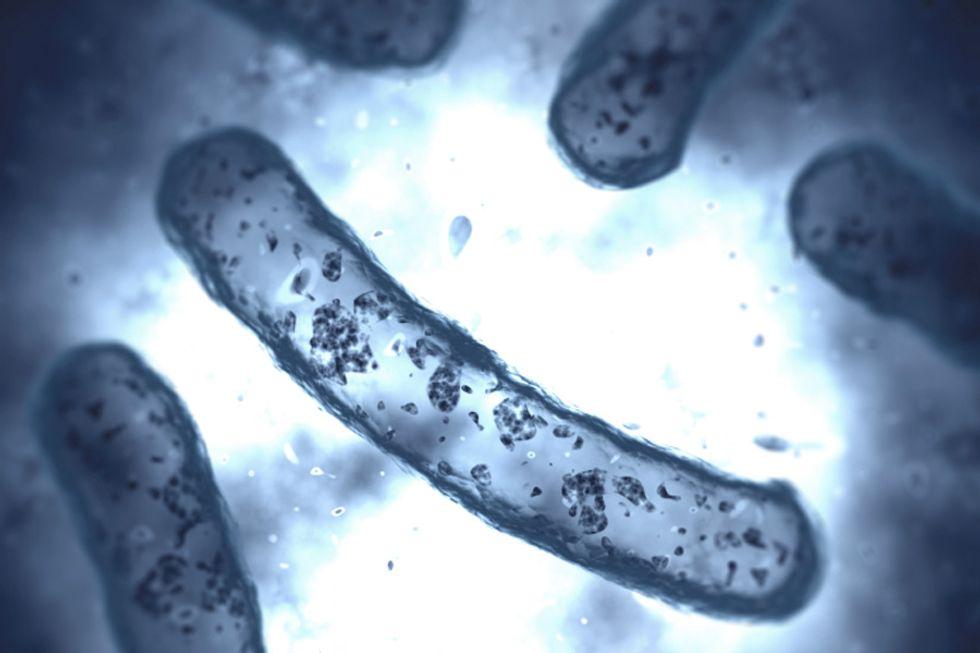 Your Bacteria-Fighting Battle Plan