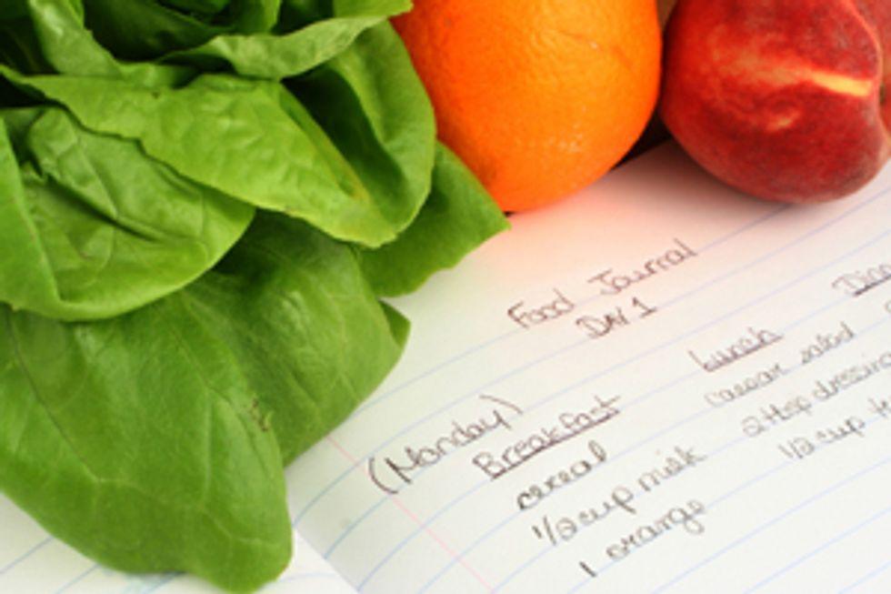 Diet Tool: The Food Log