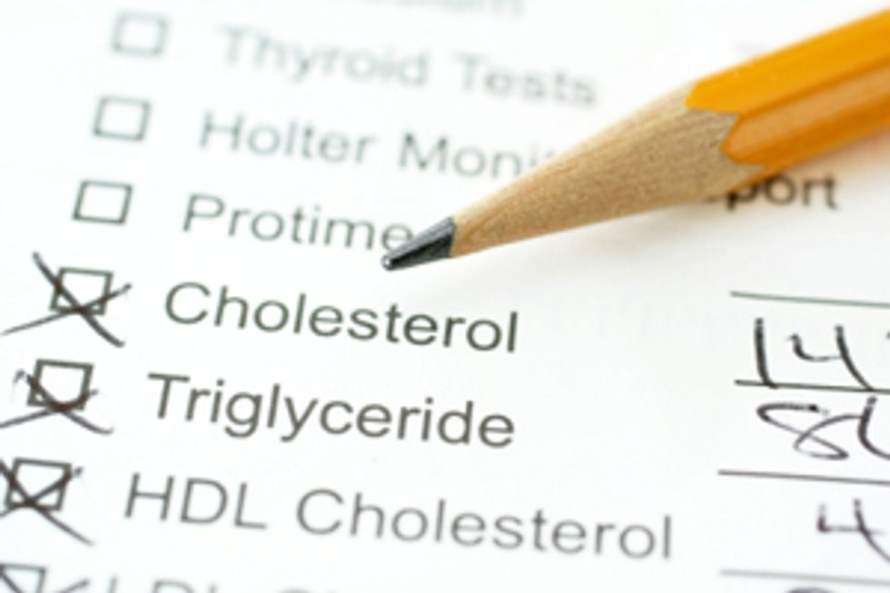 The Highs and Lows of Cholesterol