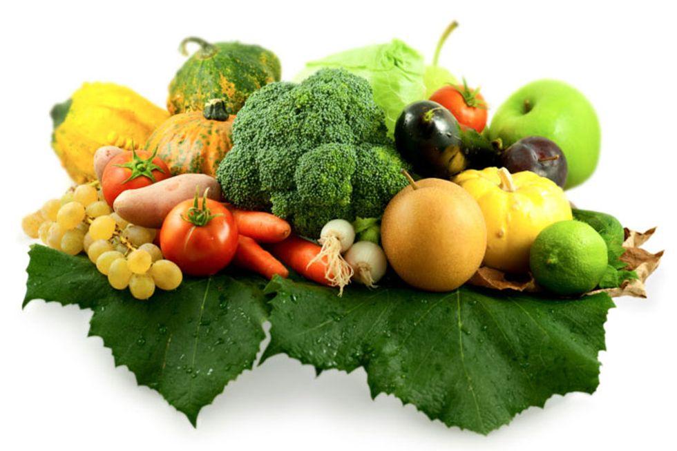 The Prehistoric Diet Plan