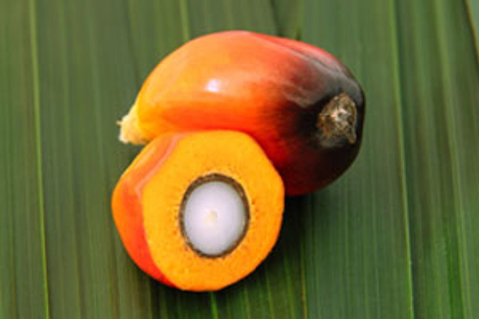Why You Should Give Red Palm Oil a Try