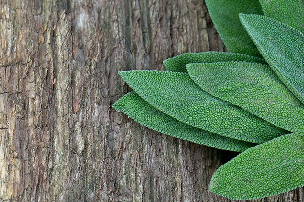 The 5 Surprising Superpowers of Sage