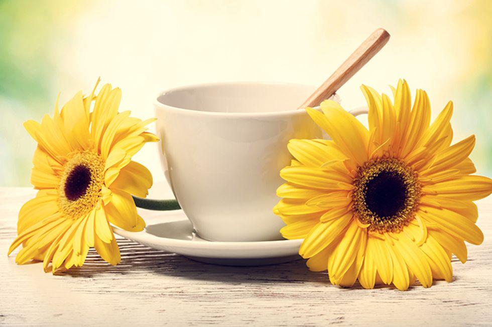 The Monday Dieter Banana Tea