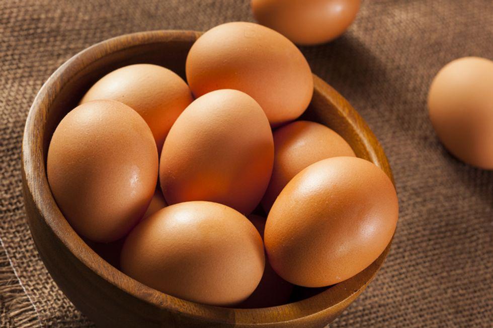Egg-White Protein Powder
