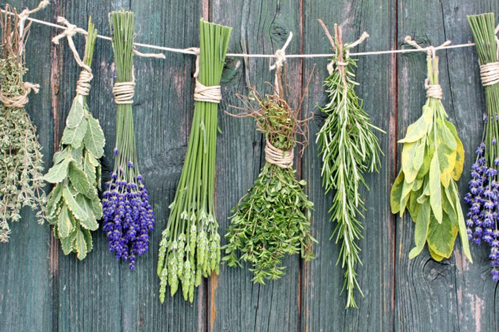 12 Healthy Herbs for Home Cures