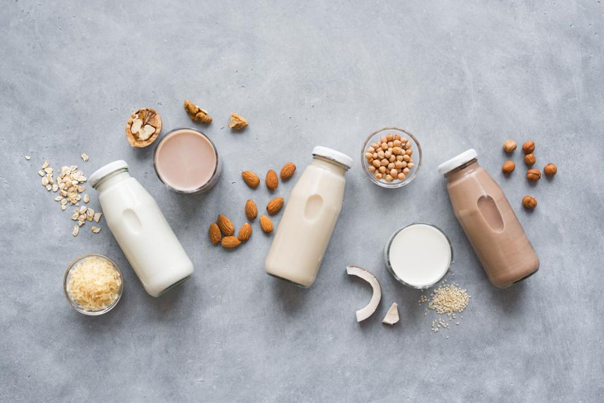 How Plant-Based Milks Compare to Dairy Milk: Fat, Calories & Protein